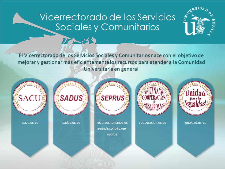 Vicerrectorado de Servicios Sociales y Comunitarios